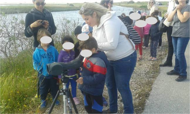 Birdwatching at the Kalloni Salt Pans, Lesvos