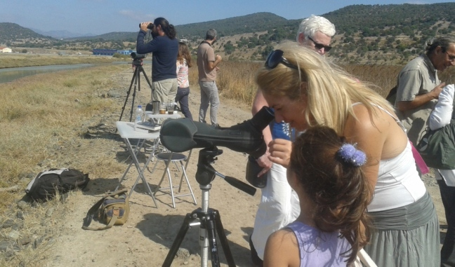 Eurobirdwatch 2016; Lesvos