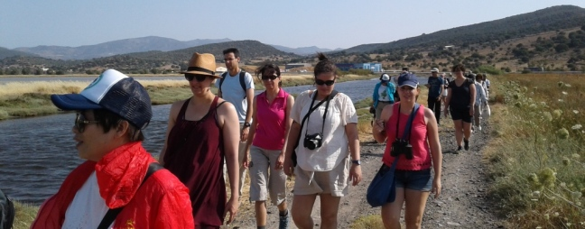 Birdwatching at the Kalloni Salt Pans