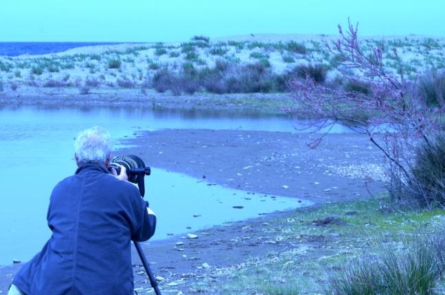 Bird photography on Lesvos
