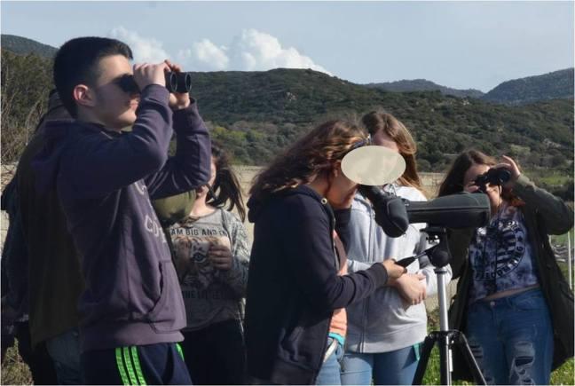 Birdwatching; Lesvos; Molivos reservoir