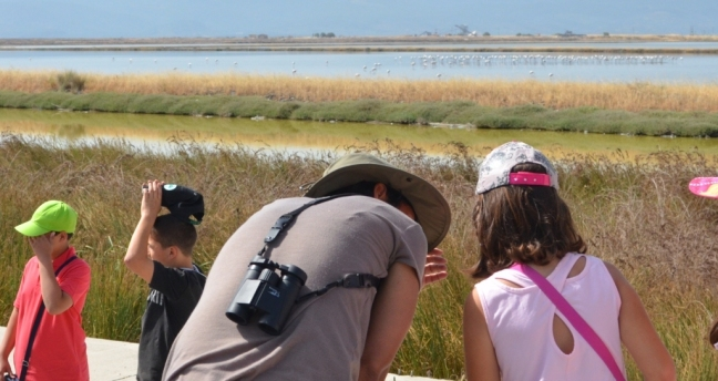 School birdwatching at the Kalloni Salt Pans; Lesvos